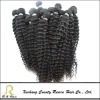 2012 New arrival Malaysian curly hair