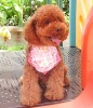 2012 New Arrive,Pet Clothes,Pet Clothing,Dog accessories
