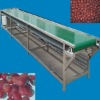 high qulaity food belt conveyor
