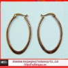 IP gold stainless steel earrings