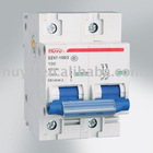 DZ47-100 Miniature Circuit Breaker (MCB)