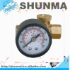 air regulator with gauge-1/4in.fitting, 160psi, SMT3741