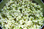 natural herbal extract rutin NF11