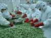 Supply frozen edmame in pod