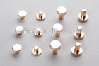 Electrical Contact Rivets for wall switch