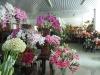 silk flower Pongee