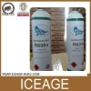 Refrigerant Gas R600a in Small Can
