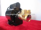 Rotary Vane Pump B100F