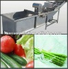 hot sale stainless steel vegetable and fruit washing machine