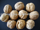 supply walnut in shell