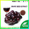 Super Grape Seed extract