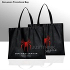 Customized All Kinds of Non-woven Promotional Bag FZ-BL-0306
