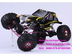 R/C Car (1/9 Brushless Rock Crawler----FS53501)