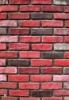 artificial culture brick
