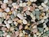 colorful pebble