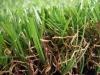 synthetic turf for kindergarten