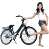 Pupular Electric bicycle with EN15194