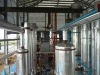 manufacturing sulphonation product line