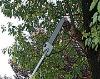 26CC handiness pole saw HYM2600S