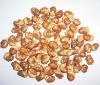 fried board beans