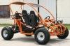 250cc go kart with CE.EPA.