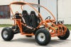 250cc go kart with CE.EPA.