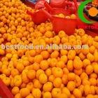 nanfeng honey orange