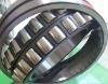 SKF HOT sale Cylindrical Roller Bearing