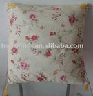 Printed soft Cushion