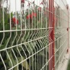 PVC Coated and Electro Galvanized Wire Mesh Fence