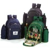 2012 New design and cheap Picnic Backpack for 4