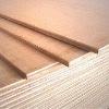 Poplar Commercial Plywood