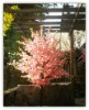 Artificial peach blossom tree Landscape for decoration