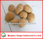 "JQ ""China Fresh Potato"" Fresh Potato Price / 2012 New Chinese Yellow Fresh Potatoes"