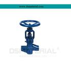 Ceramic flange globe valve