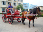 Ancient Horse Carriage/ Coach/Cart/Gig/Car