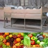 high cleaning ability fruit vegetable machine