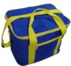 Cool Bag and Picnic Bag