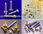 KINDS OF SCREWS,FASTENERS, HEX BOLTS.NUTS