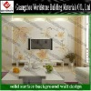 2012 WS-BGW176 new design customize TV background wall