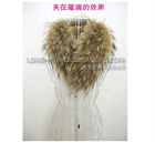 guaranteed 100% real raccoon dog scraf, fur scraf,75*15CM