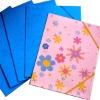 paper cardboard file folder