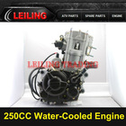 250CC Water Cooled Loncin ATV Engine,Loncin Engine,ATV Parts.