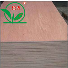 bintangor poplar plywood board 15mm