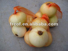 SHANDONG FRESH YELLOW ONION SIZE 8CM AT LEAST