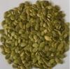 Snow white pumpkin seeds