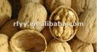 2012 WangCang Brand Walnut in shell