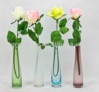 Glass Vase, Colorful Clear Glass Vase, 2012 New Style
