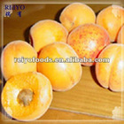 Frozen fruits--apricot