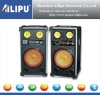 Professional 2.0 Stage Speaker (SP-3016)